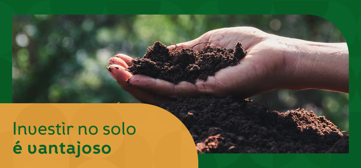 Investir no solo é vantajoso